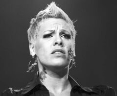 FULL CLOSE CUT CLOSECUT - US singer Pink performs on stage during the opening night of the UK Funhouse Summer Carnival stadium tour at the Stadium of Light, Sunderland, England, Friday, June 11, 2010. (AP Photo/Scott Heppell)