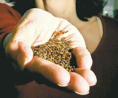 Health Canada agrees consuming flax significantly reduces cholesterol.