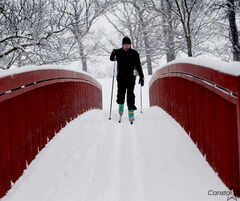 The Windsor Park Nordic Ski Centre at Windsor Park Golf Course is the crown jewel of winter activity sites in Winnipeg.