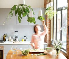 Innovations in the indoor plant world include this upside-down planter that can be suspended from the ceiling.