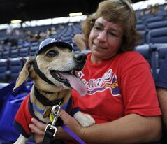 Stephanie Poynter and her pet dachshund Charlie wait for the Atlanta Braves and Oakland Athletics to begin during the team's Bark in the Park promotion where dog owners are allowed to bring their canines to a baseball game Sunday, Aug. 17, 2014, in Atlanta. (AP Photo/David Tulis)