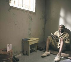 Idris Elba  portrays  Nelson  Mandela  in Mandela:  Long Walk  to Freedom.