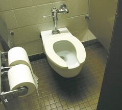 Do you know why toilet seats are U or O shaped?