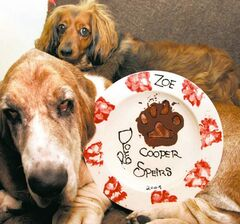 Cooper and Zoe with their paw-crafted plate.