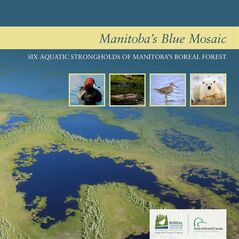 The title page of the report by Ducks Unlimited Canada and the Boreal Songbird Initiative, is shown. THE CANADIAN PRESS/HO