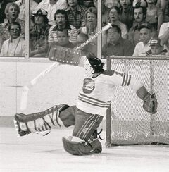Joe Daley makes a save for the Jets during a WHA game on May 20, 1978.