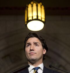 Liberal leader Justin Trudeau on January 29, 2014 on Parliament Hill in Ottawa. THE CANADIAN PRESS/Adrian Wyld