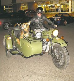 Rowan Horrick, with his buddy 'Doog' on their Russian-made 2011 Ural 750cc motorcycle complete with a sidecar, made a coffee and biscuit stop at the Tim Horton's on North Main.