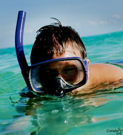 A frequent traveller to hot-and-tropical climes may appreciate the gift of his or her own mask and snorkel this holiday season.