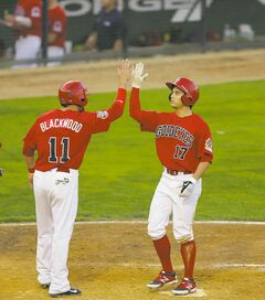 Jake Blackwood welcomes teammate Ryan Pineda to home plate after Pineda swatted a two-run homer over the left-field wall to give the Fish a 4-1 lead.