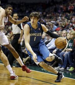 Minnesota Timberwolves' Alexey Shved (1) drives against Milwaukee Bucks' Giannis Antetokounmpo, left, during the first half of an NBA basketball game, Saturday, Dec. 28, 2013, in Milwaukee. (AP Photo/Jeffrey Phelps)