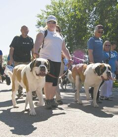 Organizers are hoping to raise $250,000 during Sunday's Paws in Motion walkathon.