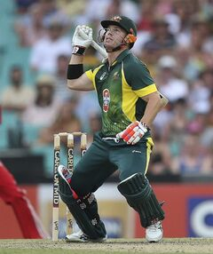 Australia's David Warner looks up and watches a high hit ball during their one-day international cricket match against England at the Sydney Cricket Ground in Sydney, Australia, Sunday, Jan. 19, 2014. (AP Photo/Rob Griffith)