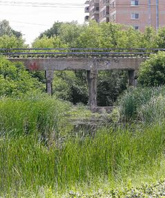 Three teens were robbed and assaulted under the railway bridge east of Empress Street after shopping Saturday.