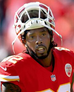 Kansas City Chiefs wide receiver Dwayne Bowe was arrested outside Kansas City over the weekend on charges of speeding and possessing marijuana, authorities said in November 2013.