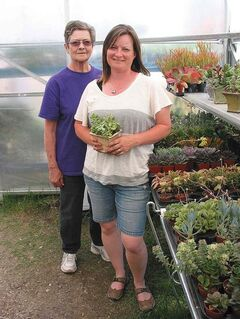 Heather Warkentin (right), owner of Warkentin's Prairie Grove Greenhouse, and her mother, Violet Pelletier, stand next to a selection of succulents, which are popular this season.