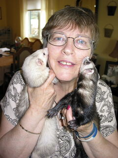 Deb Kelley with Sweetie (left) and Jazzie (right), who are both up for adoption.