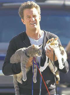 Matthew Perry as Ryan