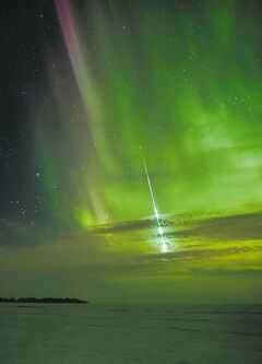 Shannon Bileski photo