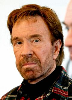 ** FILE ** Actor Chuck Norris is shown his Lone Wolf Ranch in Texas in this Jan. 20, 2008, file photo. The former chief executive of Chuck Norris' martial arts program for inner-city children has pleaded guilty to stealing from the charity, the U.S. Attorney's office said. James D. Brasher, 47, pleaded guilty on Thursday, Jan. 24, to one count of uttering a forged security, the office said in a statement. (AP Photo/Gerald Herbert)