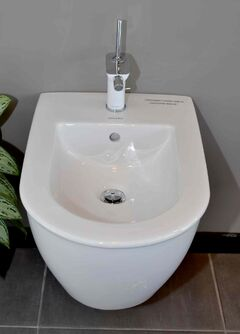 This bidet by Duravit is available at Robinson Bath Centre for about $995 plus $525 for the swivel spout.