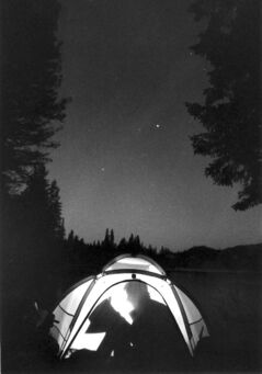 Nick Didlick / Vancouver Sun Archives