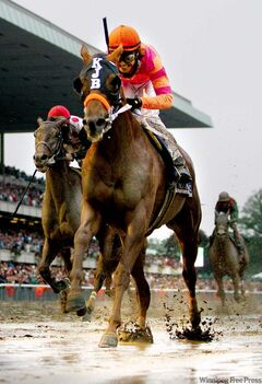 Tim Donnelly / THE ASSOCIATED PRESS