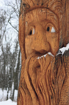 Faces are beautifully carved into both sides of the Spirit Tree in Bois-des-Esprits forest in southeast Winnipeg along the Seine River.