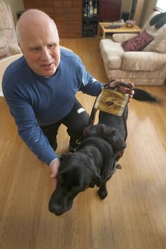 Shep Shell, with his guide dog Paige, says the incident with the blind man on the bus illustrates the need for Winnipeggers to step in to help vulnerable people.