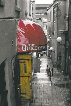The Duke of Duckworth pub's famous entrance on Mcmurdo's  Lane off Duckworth St. in St. John's.