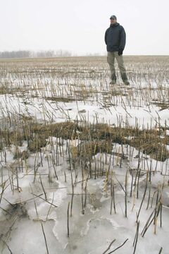 Researcher Kevin Tiessen studying the South Tobacco Creek watershed in 2009.