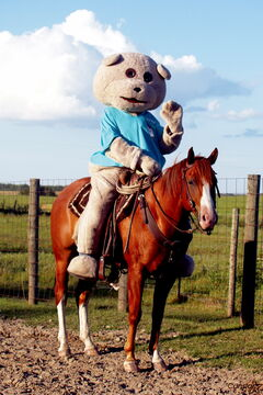 Children's Hospital Foundation mascot Dr. Goodbear is shown with Regalo, which is Spanish for