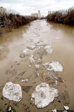 Ice flows down the Assiniboine River Sunday afternoon, as seen from the Midtown Bridge.