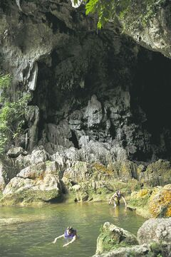 Snorkeling along Blue Creek into Hokeb Ha Cave.