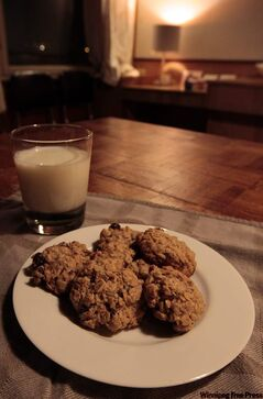 The last of our 21 days of cookies is the kind of lumpy, homey cookie you can put out for Santa.