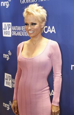 FILE - In this Jan. 11, 2014 file photo, Pamela Anderson arrives at the 3rd Annual Sean Penn & Friends Help Haiti Home Gala at the Montage Hotel in Beverly Hills, Calif. Anderson has previously talked about being a survivor of rape, but in an emotional speech for her new charity on Friday, May 16, 2014, in Cannes, France, she credits animals with helping her survive years of abuse at the hands of others. (Photo by Colin Young-Wolff /Invision/AP, File)