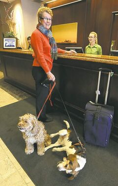 Jason Halstead / Winnipeg Free Press