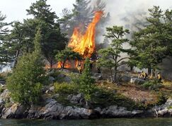 A Parks Canada crew observe a section of Camelot Island, as part of a prescribed fire in Thousand Islands National Park in an effort to protect the rare, fire dependent pitch pine on Tuesday July 22, 2014. THE CANADIAN PRESS/Fred Chartrand