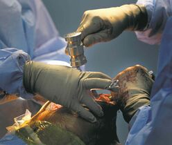 Phil Hossack / Winnipeg Free Press files 