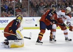 Florida Panthers goalie Roberto Luongo (1) deflects the puck as defenseman Willie Mitchell (33) and Carolina Hurricanes right wing Andrej Nestrasil (15) look on in the first period of an NHL hockey game, Wednesday, Nov. 26, 2014, in Sunrise, Fla. (AP Photo/Lynne Sladky)