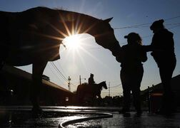 A horse gets a bath after a morning workout at Churchill Downs Friday in Louisville, Ky.