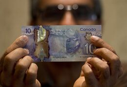 Ryerson University professor Hitesh Doshi poses with a $10 Canadian bank note in Mississauga, Ont. on Monday, July 28, 2014. Doshi discovered an error in a mountain which adorns one of Canada's new plastic bank notes. THE CANADIAN PRESS/Nathan Denette