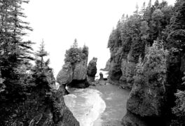 Many of Canada�s unique tourist offerings like the Hopewell Rocks of New Brunswick are yet to be discovered by the rest of the world.