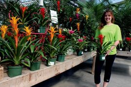 Dana Mistafa, greenhouse supervisor at Shelmerdine Garden Centre, shows off some of the colourful blooms sheltering in the company's Headingley greenhouse.