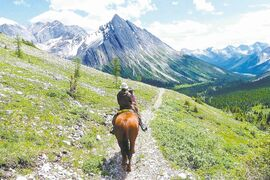 Canadian Rockies trail rides start at Ya-Ha Tinda Ranch in western Alberta.