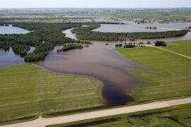 The swollen Assiniboine River covers farmland along Grand Valley Road west of Brandon, Man. on July 6, 2014. THE CANADIAN PRESS/Tim Smith
