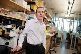 Dr. Daniel Drucker, an endocrinologist and senior scientist at Mount Sinai Hospital in Toronto, is shown in a handout photo. Researchers are probing a link between bariatric surgery and higher colon cancer risk. THE CANADIAN PRESS/ HO-Mount Sinai Hospital