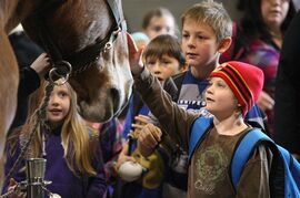 Children check out a horse at the Canadian Western Agribition in Regina in a 2013 handout photo. Cowboy-mounted shooting and a medieval-style jousting tournament are among this year's events at the Canadian Western Agribition, an international trade show that also celebrates Prairie life. THE CANADIAN PRESS/HO