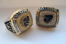 An example of a 2007 Vanier Cup ring. Dobie is missing the same one, except his name is inscribed on it.