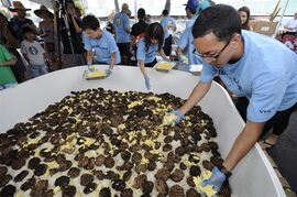 In this Sunday, Sept 28, 2014, Yutaro Kondo, right, ads handfuls of scrambled eggs on top of a layer of beef patties and rice on the giant Loco Moco in Honolulu, Hawaii. In an attempt to set the Guiness World Record for the world's largest loco moco, chef Hideaki